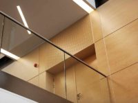 Wooden plain panels and acoustic perforated panels