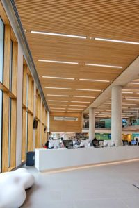 Luton Campus new library with Gustafs ribs