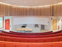 Auditorium with bespoke solid rib installation