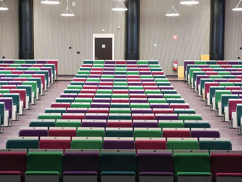 Auditorium with rib systems on the wall