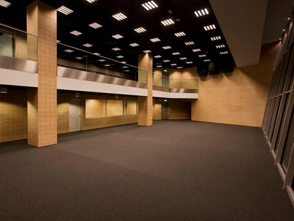 Decorative acoustic panels with wooden veneer