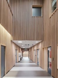 Solid timber panels are cladding school