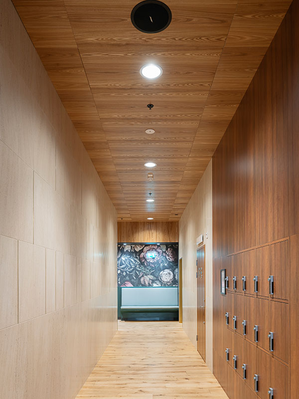 Ceiling wooden panels in shopping center