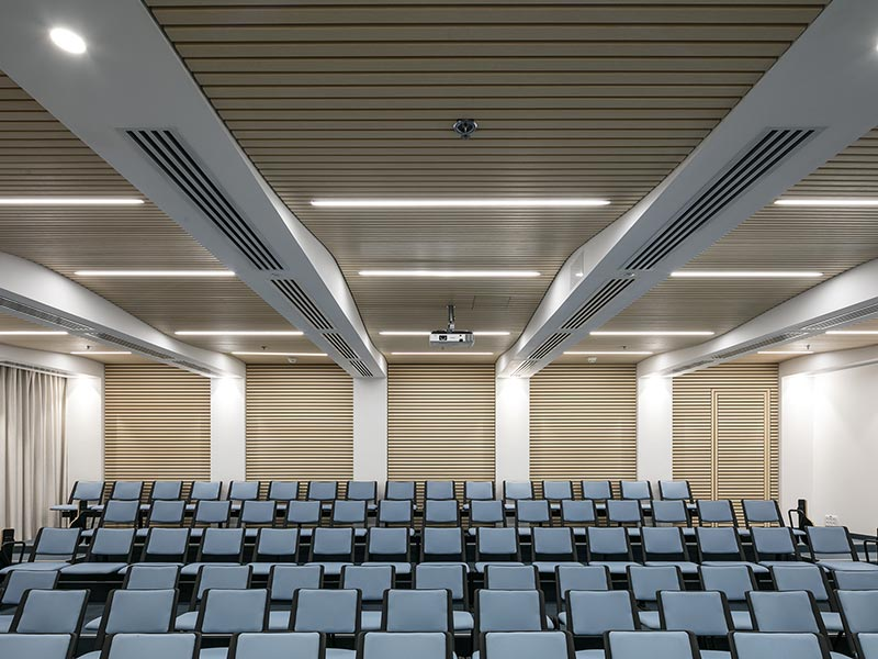 Auditorium with wooden slatted panels