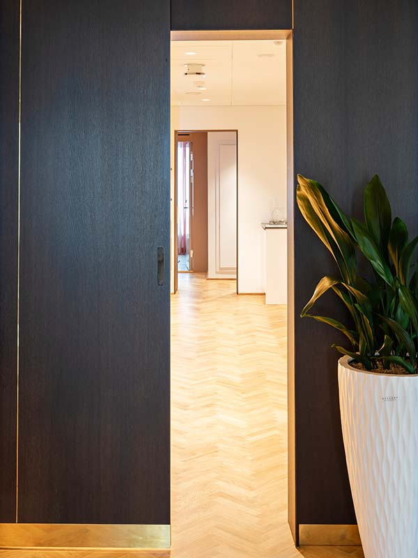 Sliding door in smoked oak veneer and brass details