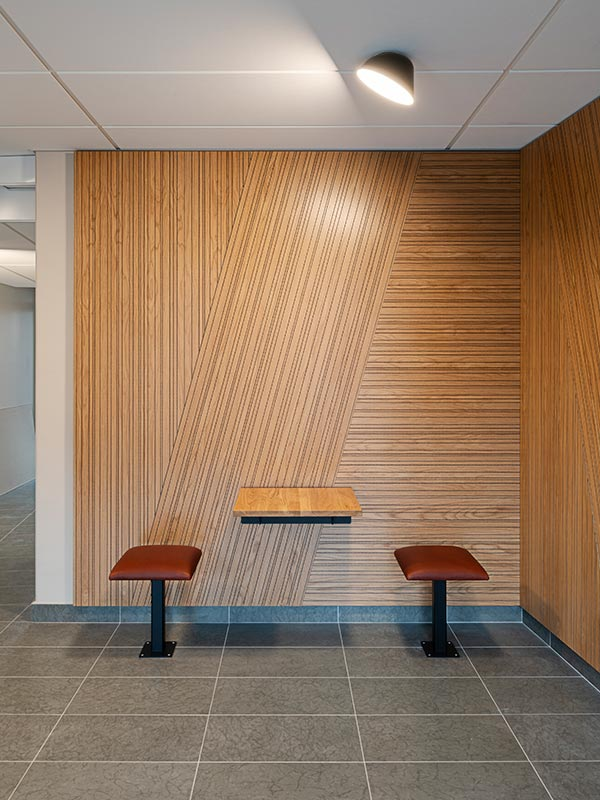 Decorative acoustic wood panels