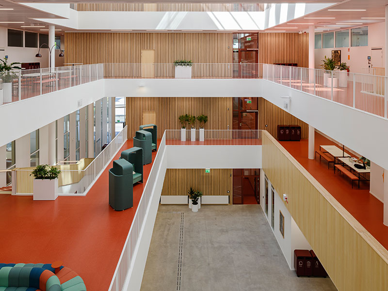 University atrium cladded with slatted wood panels