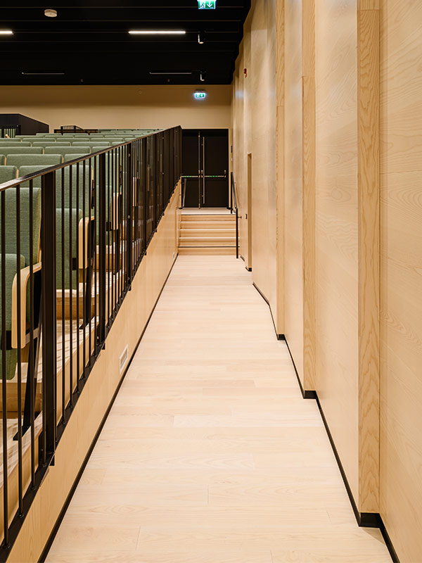 Inclined wood wall panels in auditorium