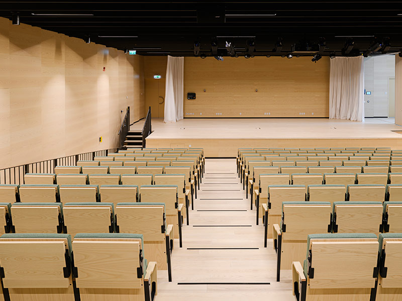 Auditorium with wood wall panels in ash