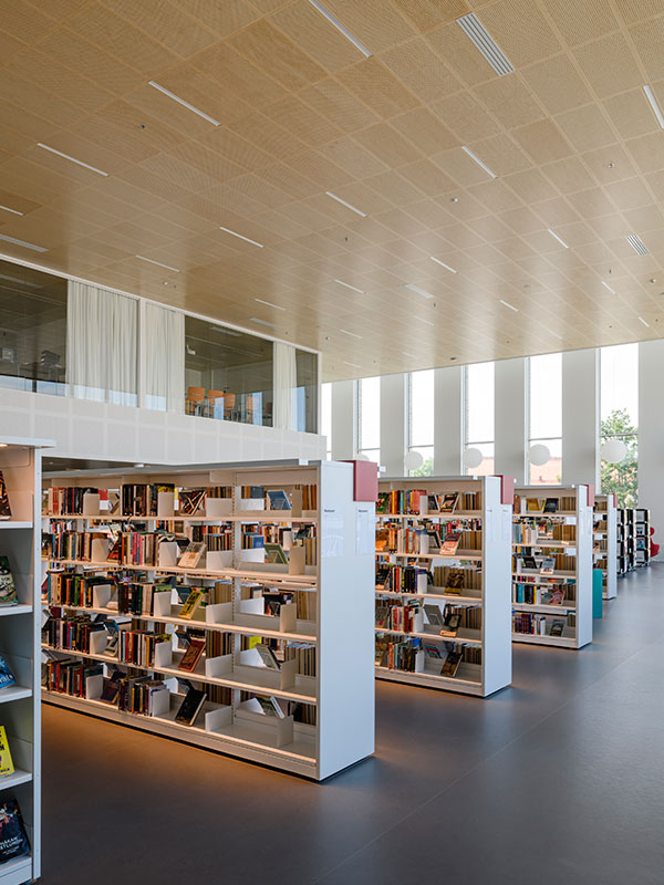 Library ceiling with acoustic wood panels in birch