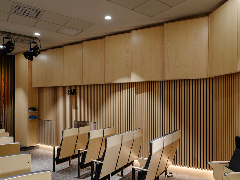 Timber panels and acoustic wood panels in refurbished plenary hall