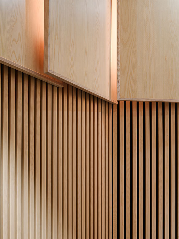 Detailed view of timber panels and acoustic wood panels in plenary hall
