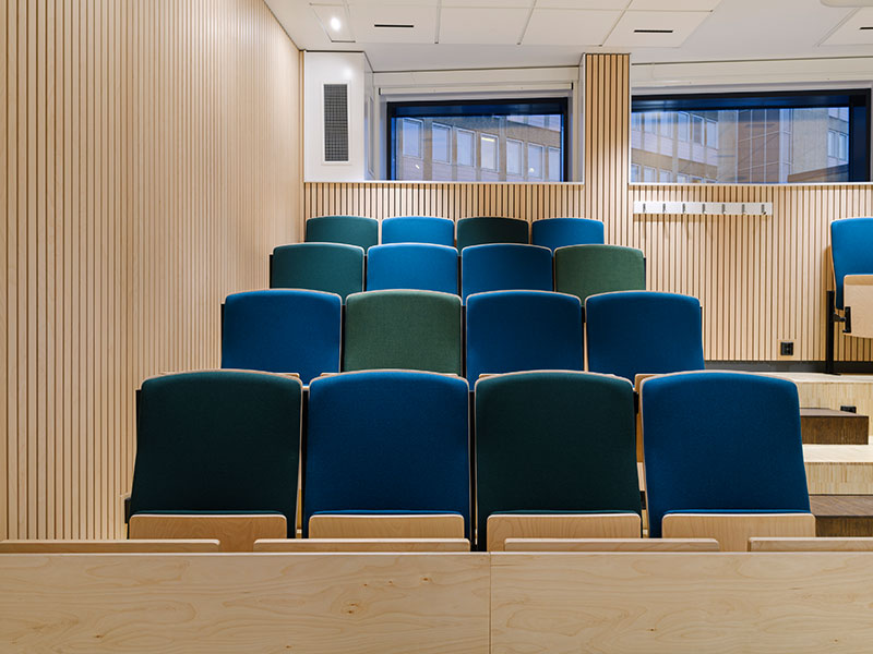 Hospital auditorium with wood slats in birch