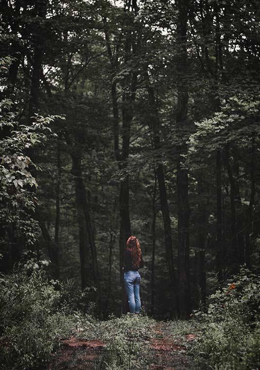 What are the other positive aspects to forest bathing?